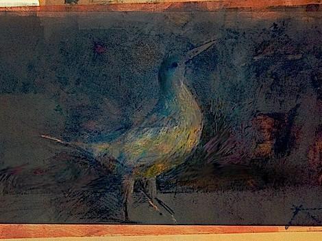 Bird_Post-1-11