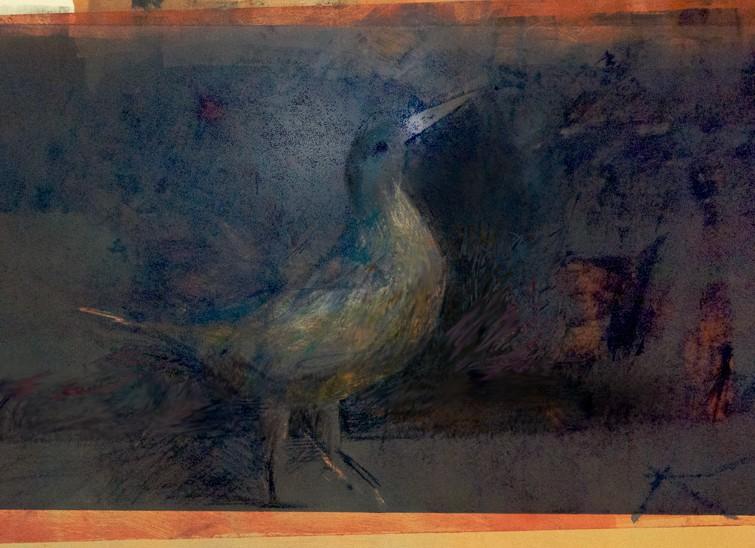 Bird_Post-1-12