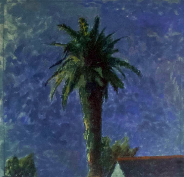 A House and a Palm at Night