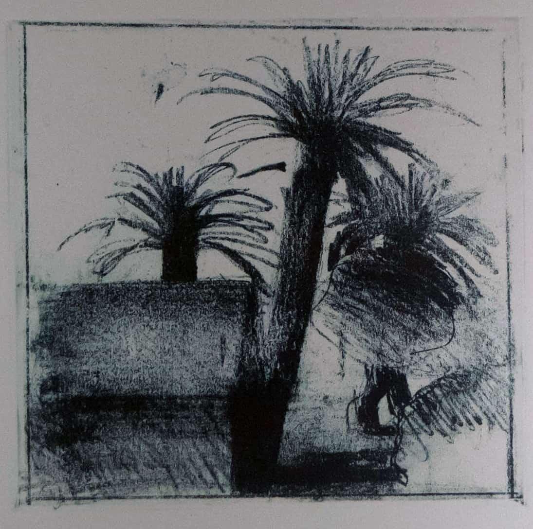 Landscape Black and White Palms_large